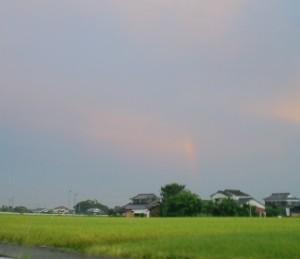 CA3C0224虹